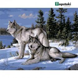 Картина за рисуване по номера - Вълци