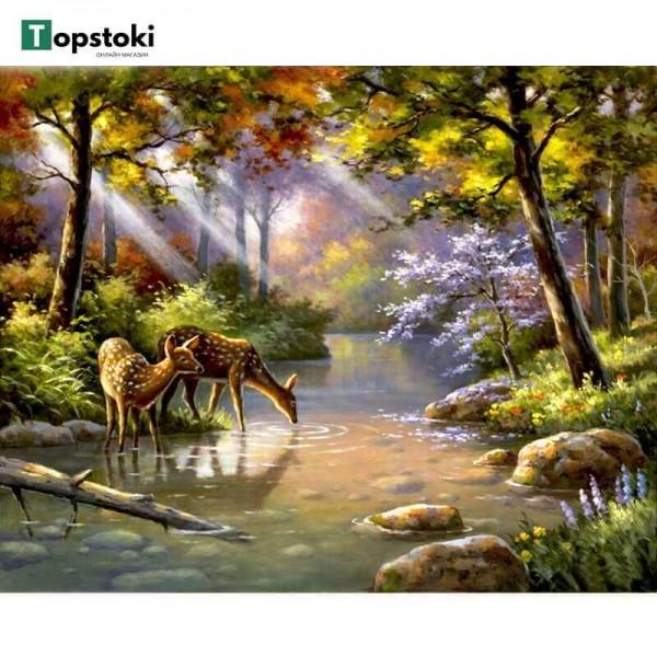 Картина за рисуване по номера - Природа